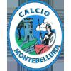 Calcio Montebelluna 1919