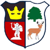 Cinderford Town AFC