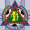 FC Petrocub vs FC FlorestiBetting tips