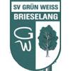 SV Grun Weiss Brieselang