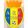 FC Petrocub vs FC FlorestiLive Streaming